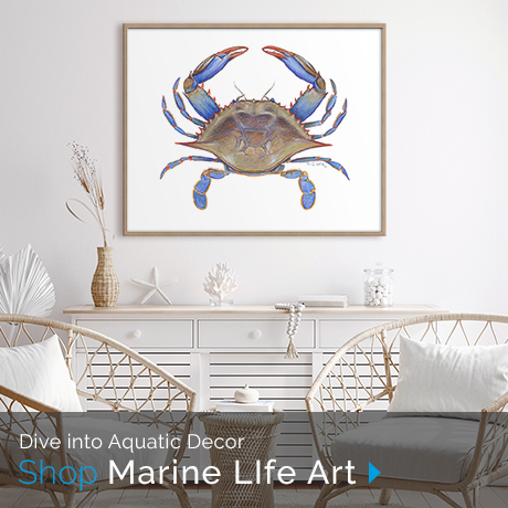 Dive into Aquatic Decor| Shop Marine Life Wall Art Collection