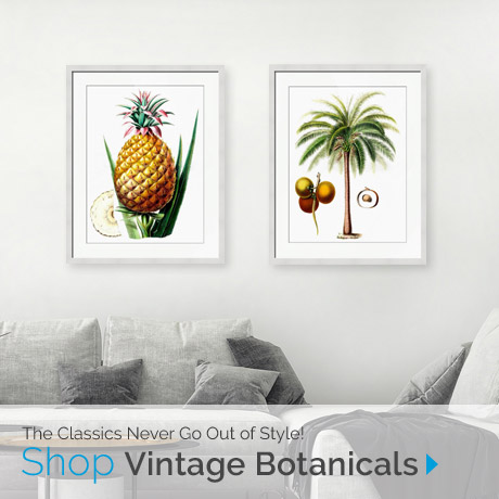 The Classics Never Go Out of Style! Shop Botancial